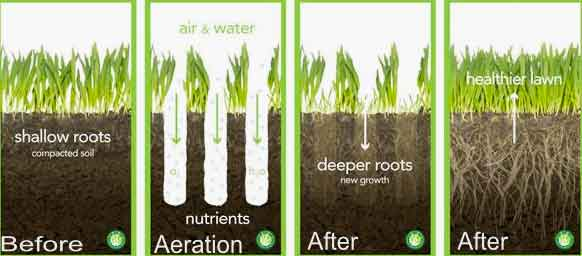 Lawn Aeration Service Cheyenne Wy Envisiacare Services